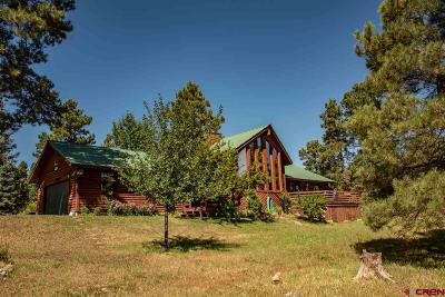 Pagosa Springs Single Family Home NEW: 217 Martinez Place
