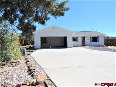 Cedaredge Single Family Home For Sale: 19054 Pinon Drive