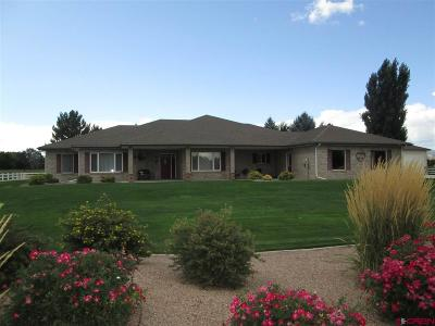 Montrose Single Family Home For Sale: 61950 Nighthawk Road