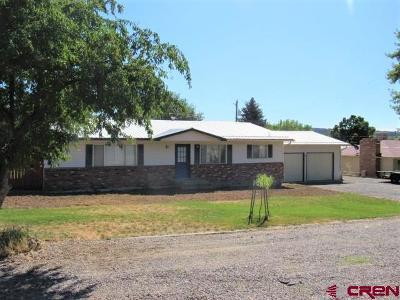 Cedaredge Single Family Home NEW: 725 N Grand Mesa Drive