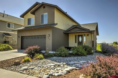 La Plata County Single Family Home NEW: 1628 S Taylor Circle