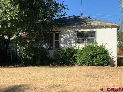 Cortez Multi Family Home NEW: 217 S Elm