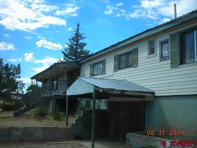La Plata County Single Family Home NEW: 40355 E Hwy 160