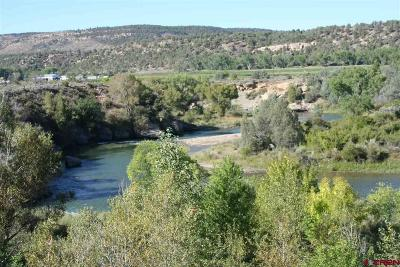Durango Residential Lots & Land NEW: S Hwy 550 Highway