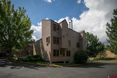 Durango Condo/Townhouse NEW: 6 Ferringway Circle #2