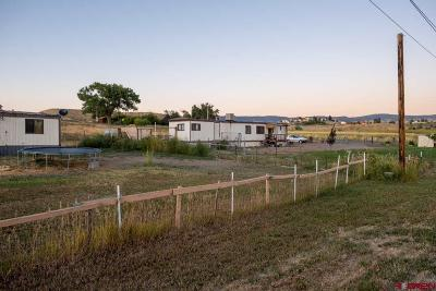 Delta County, Montrose County Mobile/Manufactured Back on Market: 13721 6700 Road