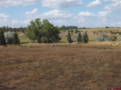 Cortez Residential Lots & Land NEW: 21243 Road P.3
