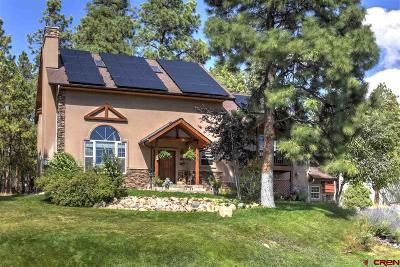 Durango Single Family Home NEW: 615 Hogan