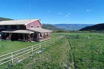 Single Family Home For Sale: 19561 Kimball Creek Road