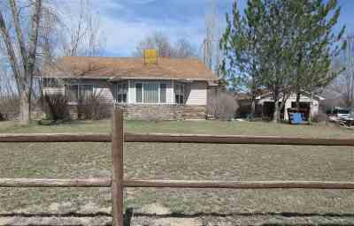Fruita Single Family Home For Sale: 1754 L 1/2 Road