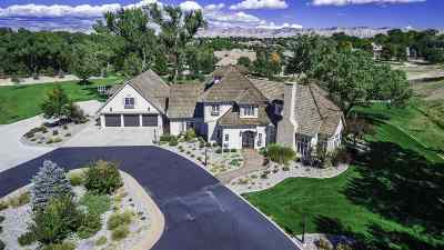 Grand Junction Single Family Home For Sale: 705 Estates Boulevard