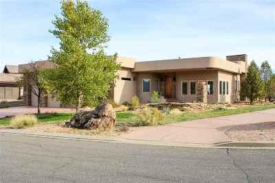Grand Junction Single Family Home For Sale: 350 High Desert Road