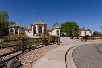 Grand Junction Single Family Home For Sale: 719 Washington Court