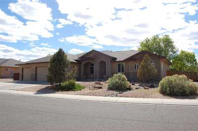 Grand Junction Single Family Home For Sale: 731 Centauri Court