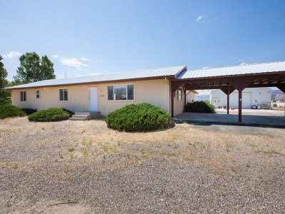 Fruita Single Family Home For Sale: 1831 L Road