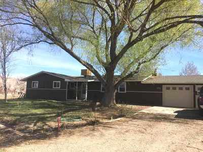 Palisade Single Family Home For Sale: 538 35 1/2 Road