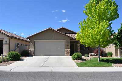 Grand Junction Single Family Home For Sale: 2839 1/2 Kelso Mesa Drive