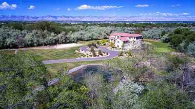 Grand Junction Single Family Home For Sale: 614 20 Road