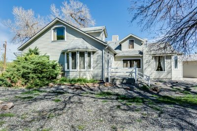 Grand Junction Single Family Home For Sale: 2026 South Broadway