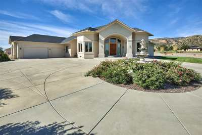 Grand Junction Single Family Home For Sale: 675 Curecanti Circle