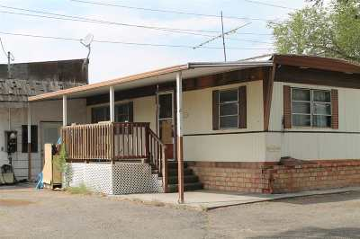 Grand Junction Single Family Home For Sale: 342 McFry Road