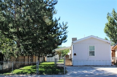 Fruita Single Family Home For Sale: 553 Lonnie Way