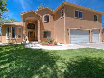Grand Junction Single Family Home For Sale: 2381 1/2 S San Miguel Drive