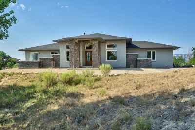 Grand Junction Single Family Home For Sale: 984 Kite Court
