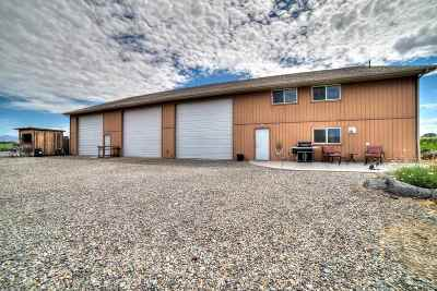 Fruita Single Family Home For Sale: 1060 19 Road
