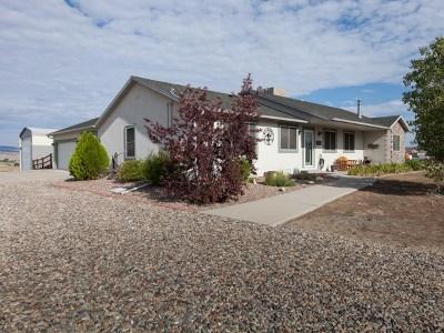 Whitewater Single Family Home For Sale: 115 Desert Vista Court