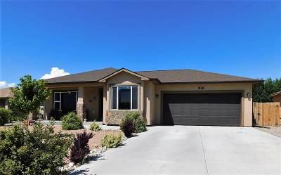 Palisade Single Family Home For Sale: 816 Vineyard Avenue