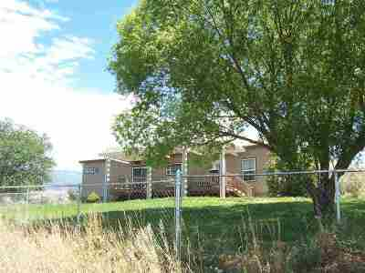 Palisade Single Family Home For Sale: 3576 E Road