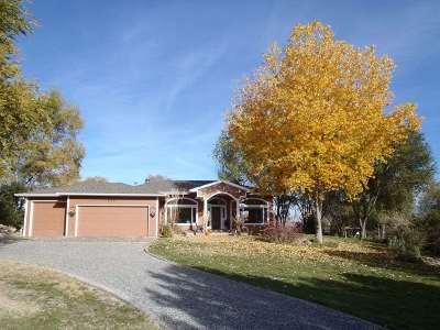 Grand Junction Single Family Home For Sale: 670 Canyon Creek Drive