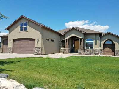 Fruita Single Family Home For Sale: 1986 J Road
