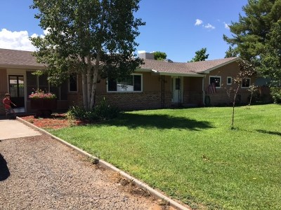 Grand Junction Single Family Home For Sale: 2237 Windsor Court