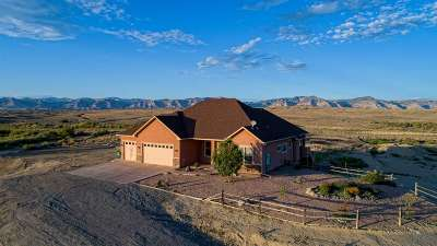 Fruita Single Family Home For Sale: 1952 O Road