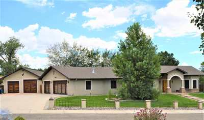 Grand Junction Single Family Home For Sale: 648 Pineneedle Court