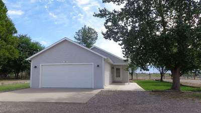 Grand Junction Single Family Home For Sale: 424 29 Road