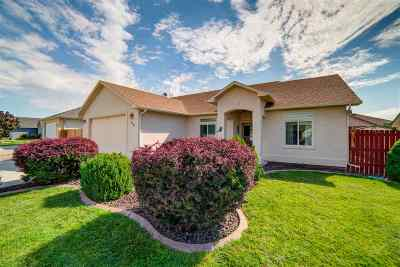 Fruita Single Family Home For Sale: 746 Comstock Drive
