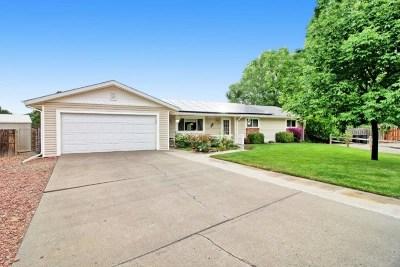 Grand Junction Single Family Home For Sale: 2146 Rainier Court
