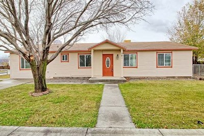 Fruita Single Family Home For Sale: 301 Tamarisk Court