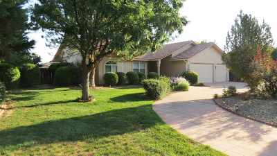 Grand Junction Single Family Home For Sale: 2320 South Rim Drive