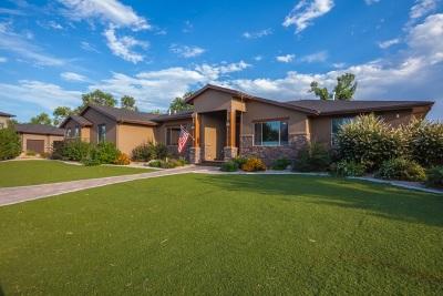 Fruita Single Family Home For Sale: 1010 Wildwood Drive