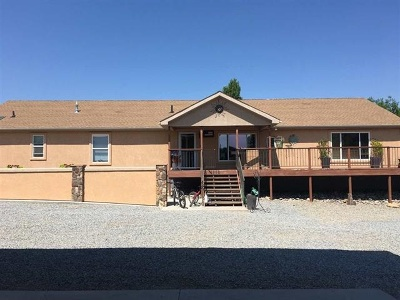 Grand Junction Single Family Home For Sale: 519 Reed Mesa Drive