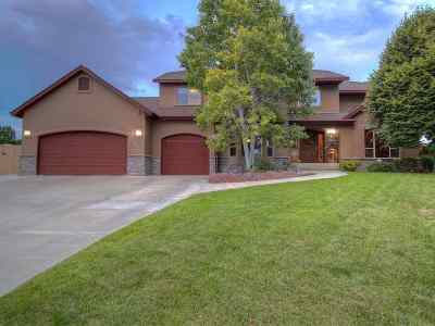 Grand Junction Single Family Home For Sale: 2338 Knoll Circle