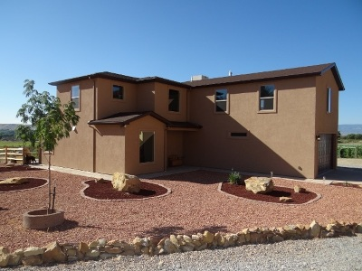 Palisade Single Family Home For Sale: 817 35 8/10 Road