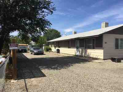 Fruita Multi Family Home For Sale: 139 N Willow Street