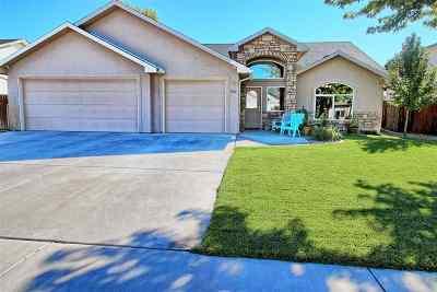 Fruita Single Family Home For Sale: 560 Heath Drive