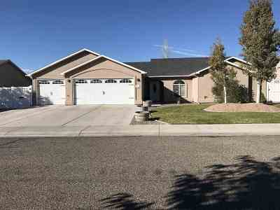 Fruita Single Family Home For Sale: 861 Dee Ann Street