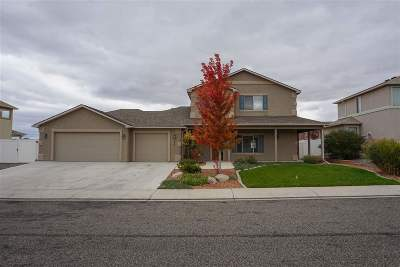 Grand Junction Single Family Home For Sale: 176 Winter Hawk Drive